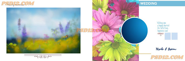 Special 12x36 PSD Templates Free Download