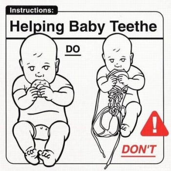 MissBudgetBaby: How To Look After Your Baby...