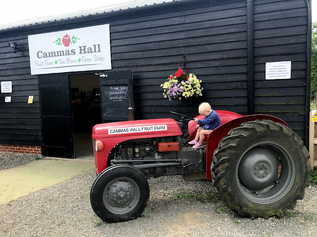 A toddler sat on a red tractor outside Cammas Hall PYI farm