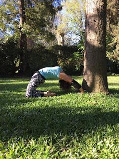 yoga directo posturas para flexibilizar nuestra espalda
