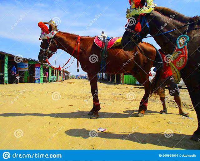 https://www.dreamstime.com/ujung-gebang-beach-beach-adjacent-to-plentong-beach-bandung-city-flowers-paris-van-java-city-which-image205965867