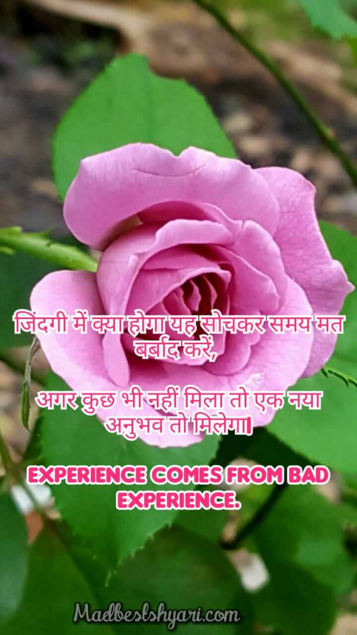 image good morning flowers