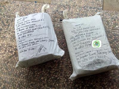 Benih pesanan WIDODO Merauke, Papua..   (Setelah Packing karung untuk kirim Transit ke Surabaya)