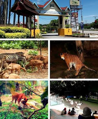 Night Safari zoo melaka menarik malam