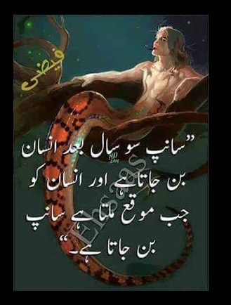 Qutoes Urdu Quotes Life Quotes Urdu Quotes About Life Short