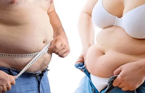 extra belly fat: Visceral vs subcutaneous