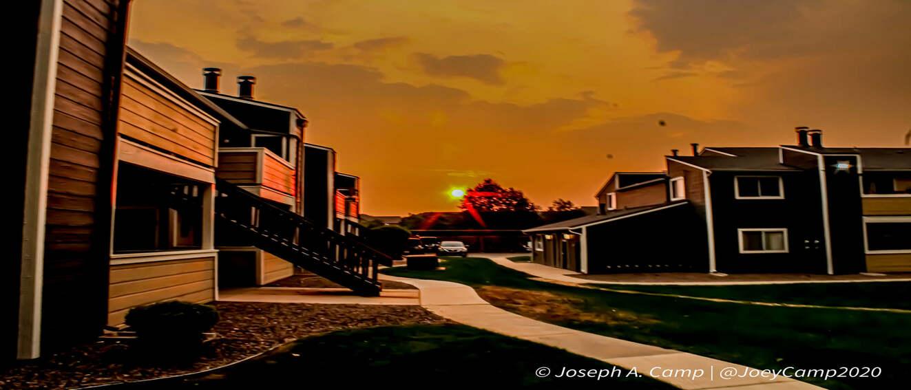 Joey Camp 2020