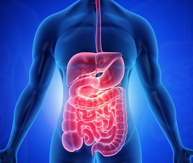 Gastroenterological