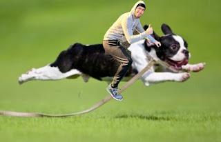 Hola Soy Germán vs Bicicleta humor perro