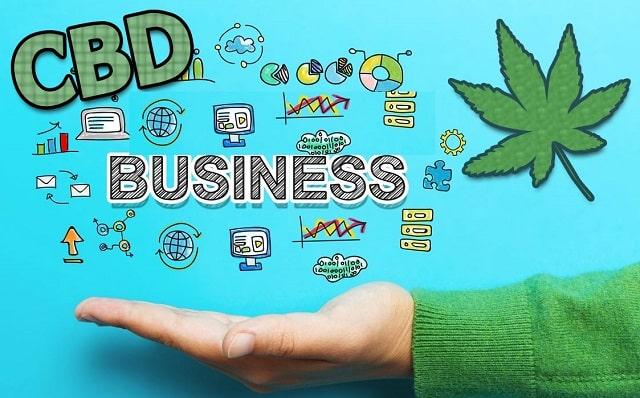 guide starting cbd business cannabidiol company