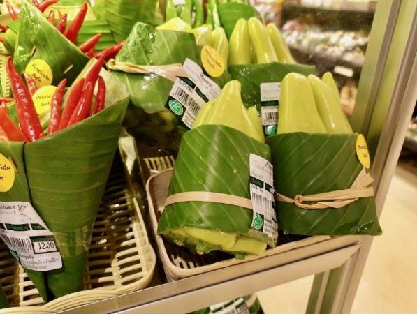 contoh daun pisang untuk pembungkus