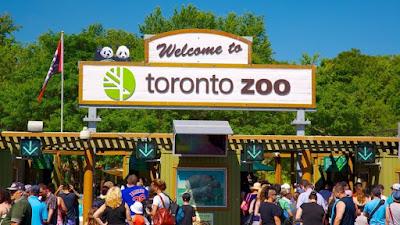 حديقة الحيوانات تورونتو (كندا)