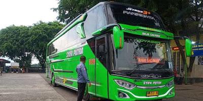 Sejarah PO Syifa Putra, Bus Pariwisata Asal Kota Demak