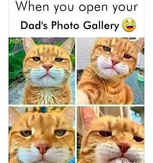Dad Photos Meme