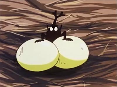 escarabajo-nido-aguila