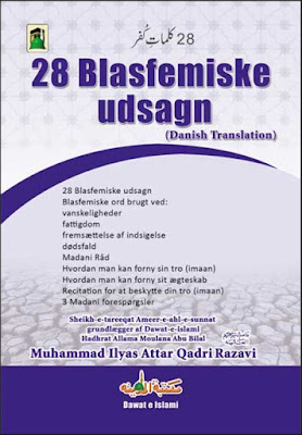 Download: 28 Blasfemiske Udsagn pdf in Danish