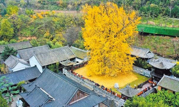 วัดกู่กวนอิน (Gu Guanyin Temple: 古观音禅寺) @ www.chinatimes.com