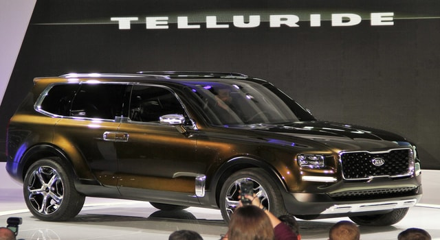 Kia Telluride - a car payment of a very special four-test