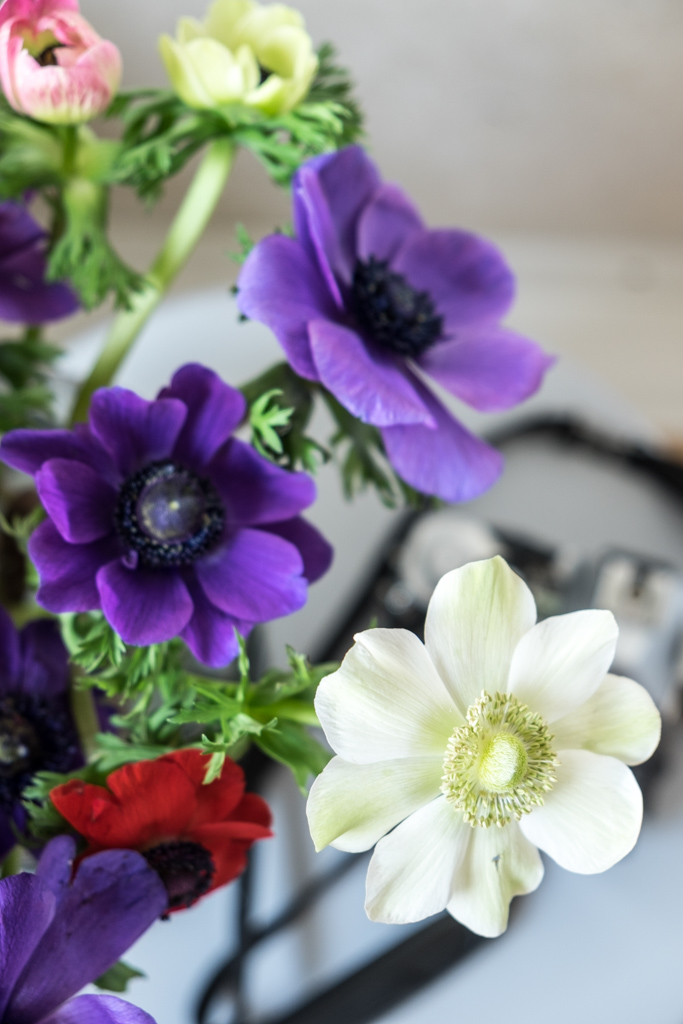 fim.works | Lifestyle Blog | ein bunter Strauß Anemonen