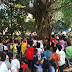 Pohon Rumah Kuntilanak di Lemahabang Masih Ramai Dikunjungi
