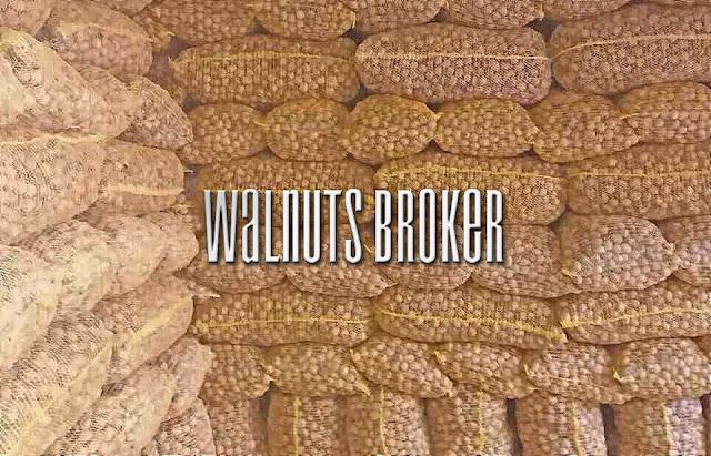 Цена на грецкий орех в 2019 году от Walnuts Broker