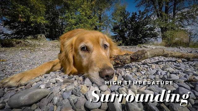 High Temperature / Too Hot Surrounding