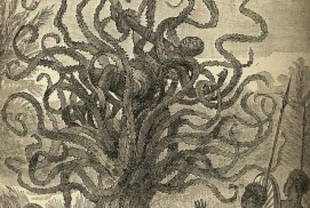 pohon pemakan manusia