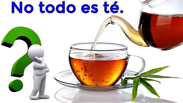 ¿A qué bebidas o plantas se les considera como té?