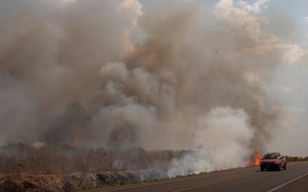 Φωτιές στον Αμαζόνιο: Ο πραγματικός κίνδυνος για την ανθρωπότητα