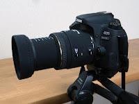 SIGMA MACRO 50mm F2.8 EX DG キヤノン マクロ撮影