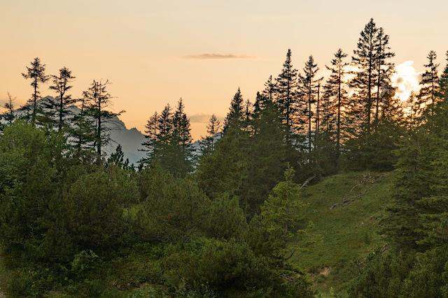 Schillerkopf und Mondspitze | Panoramawanderung am Bürserberg | Wandern Brandnertal | Wanderung Vorarlberg 16