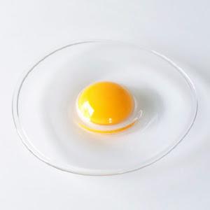本物の生卵なのようなガラスのお皿