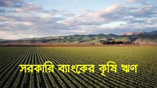 ৫ হাজার কোটি টাকা ৪% সুদে কৃষিতে প্রাণোদনা Krishi Loan BD কৃষি লোন