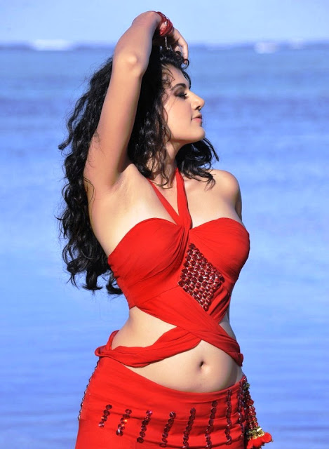 Majestic and sweetheart Tapsee latest hot and spicy photos