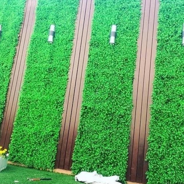 شركة تركيب عشب صناعي بالفيوم