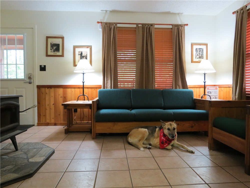 The Cabins At This Park Are Pet Friendly! I Stayed In Cabin 8. Click Here  For More Information On Cabin Rentals.