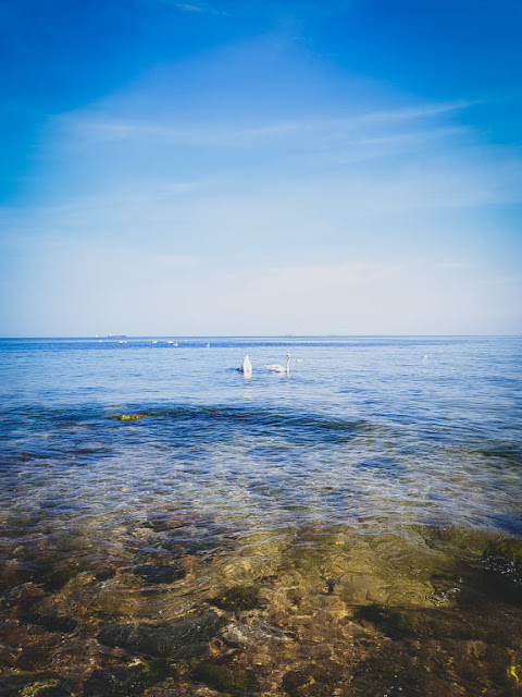 Plaża w Redłowie