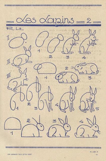Metode menggambar kelinci - dalam aneka posisi