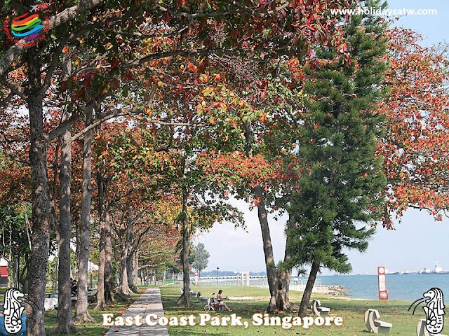 Activities to do in East Coast Park Singapore