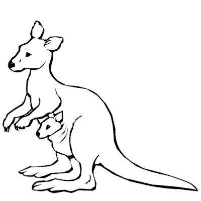 Gambar mewarnai kanguru - 7