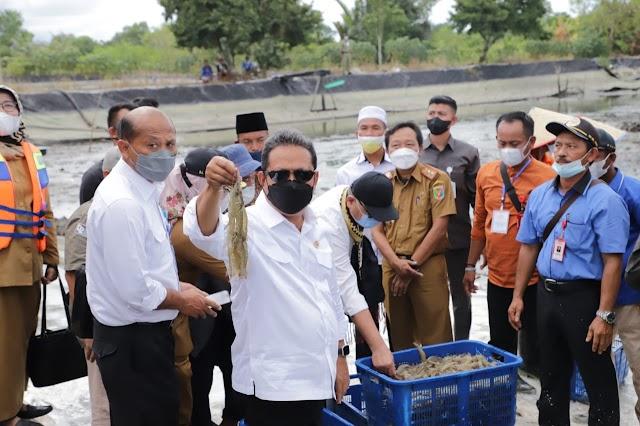 Menteri Trenggono Siapkan Jurus Sakti Bangkitkan Tambak Udang Dipasena