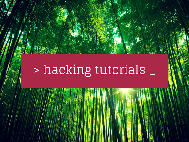 Best Hacking Tutorials