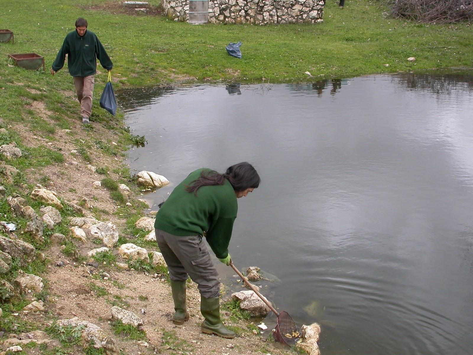 Asociaci n herpetol gica granadina retirando basura en for Plastico para impermeabilizar lagunas