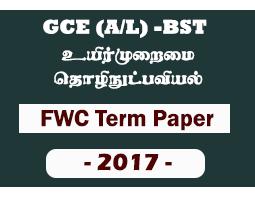 A/L BST FWC 4th Term Paper (2017)