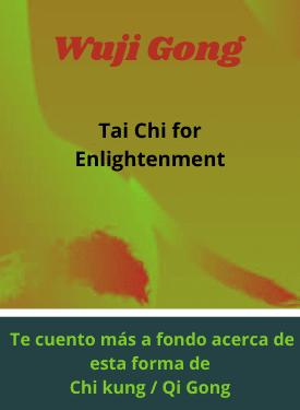 profundizando en wuji gong