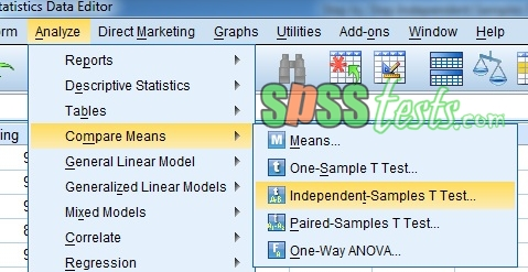 Step by Step Independent Samples T-Test in SPSS 21