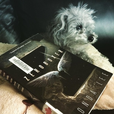 Murchie lays on a sheep-shaped pillow, everything but his raised head concealed by a trade paperback copy of Zeroboxer laid parallel with his body. The book's cover features a rusted metal Z suspended in space so it completely fills the space. A pair of black wings with metal reinforcements hover against the Z.
