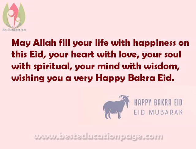 May Allah fill your life with happiness on this Eid, your heart with love, your soul with spiritual, your mind with wisdom, wishing you a very Happy Bakra Eid.