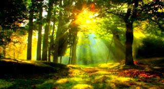 Potensi, Manfaat dan Fungsi Sumber Daya Alam dan Kemaritiman di Indonesia
