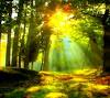 Potensi, Manfaat dan Fungsi Sumber Daya Alam Indonesia